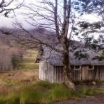 El Caulle Refugio